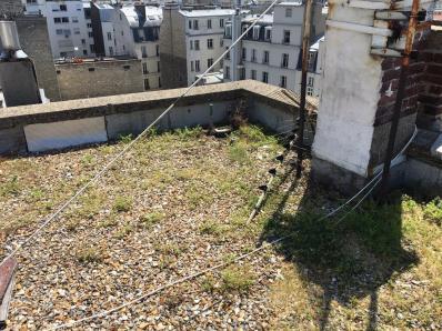 Désordres dus à l'état des antennes de la toiture et de la présence de la végétation.